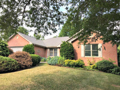 Botetourt County Single Family Home For Sale: 294 Stonehaven Ln