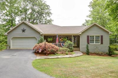 Botetourt County Single Family Home For Sale: 1966 Woodshire Dr