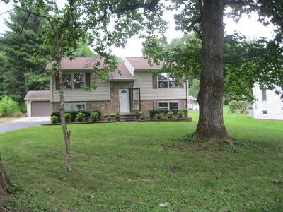 Salem Single Family Home For Sale: 2235 Valleydale Rd
