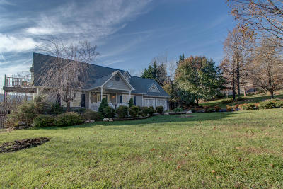 Franklin County Single Family Home For Sale: 520 Green Level Rd
