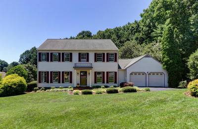 Roanoke County Single Family Home For Sale: 5424 Canter Dr