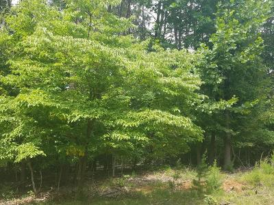 Bedford County Residential Lots & Land For Sale: Gap Bridge Rd