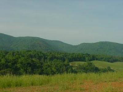 Residential Lots & Land For Sale: Bent Mountain Rd
