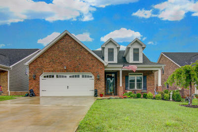 Salem Single Family Home For Sale: 4662 Alleghany Dr