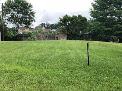 Salem Residential Lots & Land For Sale: 913 North Mill Rd