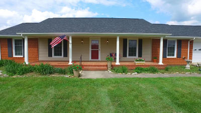 Botetourt County Single Family Home For Sale: 230 Pinehaven Rd