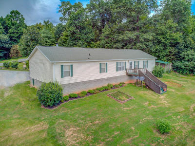 Vinton Single Family Home For Sale: 704 Mountian Meadow Dr
