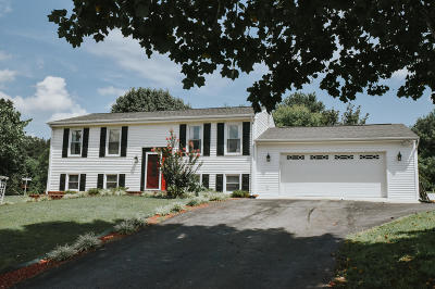 Goodview Single Family Home For Sale: 103 Brightview Ct
