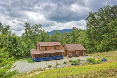Salem Single Family Home For Sale: 4650 Deer Trail Dr