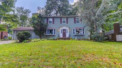 Blue Ridge Single Family Home For Sale: 245 Queen Regent Ct