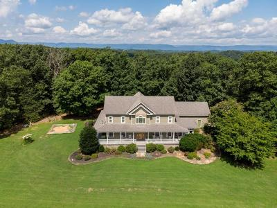 Botetourt County Single Family Home For Sale: 1467 Houston Mines Rd