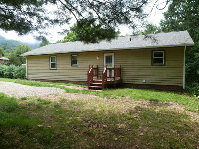 Roanoke County Single Family Home For Sale: 8061 Whistler Dr
