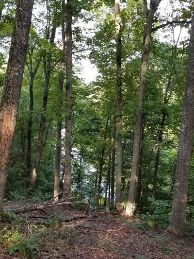 Pittsylvania County Residential Lots & Land For Sale: Noahs Knoll