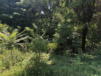 Residential Lots & Land For Sale: Winding Way Rd SW