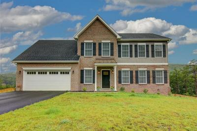 Roanoke County Single Family Home For Sale: 4255 Campbell View Ln