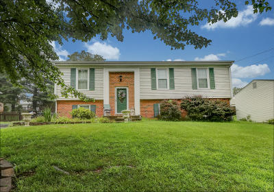 Single Family Home For Sale: 3585 Janney Ln