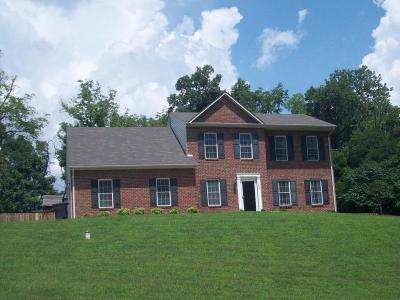 Roanoke County Single Family Home For Sale: 7603 Peebles Ln