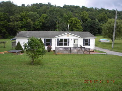 Botetourt County Single Family Home For Sale: 958 Ridgeway Dr