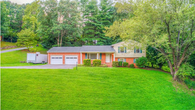 Single Family Home For Sale: 3782 Tomley Dr