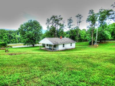 Botetourt County Single Family Home For Sale: 2481 Blue Ridge Blvd