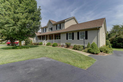 Roanoke County Single Family Home For Sale: 229 McIntosh Rd