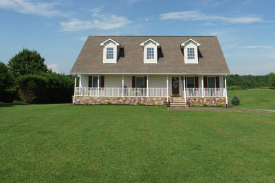 Moneta Single Family Home For Sale: 2109 Meadors Spur Rd