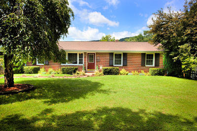 Troutville Single Family Home For Sale: 1229 Laymantown Rd
