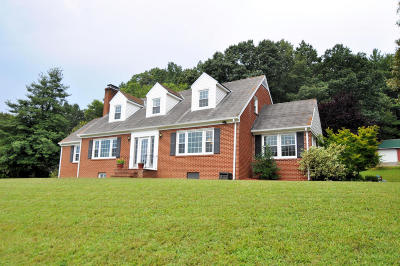 Botetourt County Single Family Home For Sale: 1176 Narrow Passage Rd