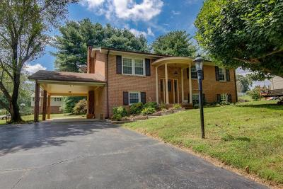 Single Family Home For Sale: 84 Holly Ln