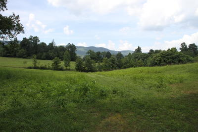 Blue Ridge Residential Lots & Land For Sale: Carter Hollow Rd