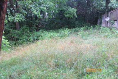 Residential Lots & Land For Sale: 128 Rabbits Way