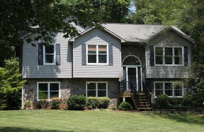 Botetourt County Single Family Home For Sale: 160 Lakeridge Cir