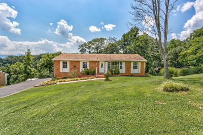 Botetourt County Single Family Home For Sale: 307 Hunters Trl