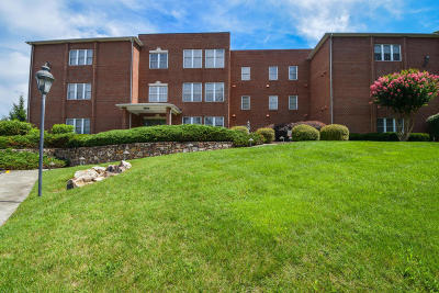 Roanoke County Attached For Sale: 3060 McVitty Forest Dr #212