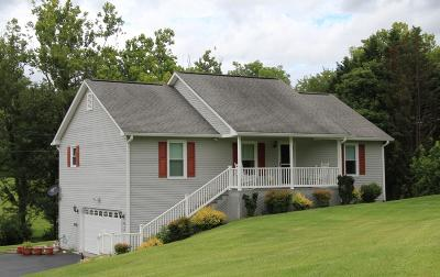 Botetourt County Single Family Home For Sale: 9 Dillon Dr