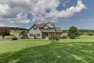 Botetourt County Single Family Home For Sale: 2060 Brughs Mill Rd