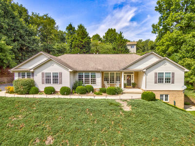 Roanoke County Single Family Home For Sale: 6939 Highfields Farm Dr