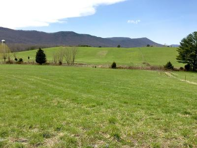 Botetourt County Farm For Sale: 665 Etzler Rd