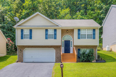 Salem Single Family Home For Sale: 1734 Connors Run