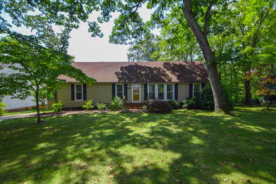Salem Single Family Home For Sale: 4828 Warrior Dr