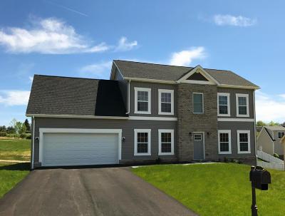Roanoke County Single Family Home For Sale: 4198 Faircrest Ln