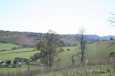 Roanoke County Residential Lots & Land For Sale: 7515 Bending Oak Dr