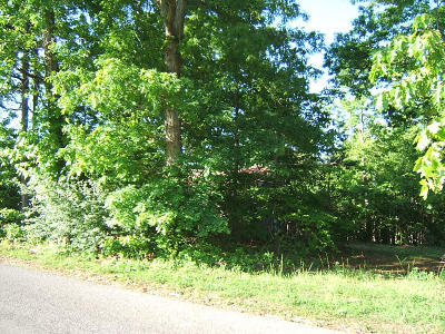 Goodview Residential Lots & Land For Sale: Lot 6 Horseshoe Bend Rd