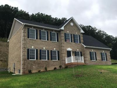 Roanoke County Single Family Home For Sale: 4240 Campbell View Ln