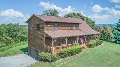 Botetourt County Single Family Home For Sale: 2828 Catawba Rd