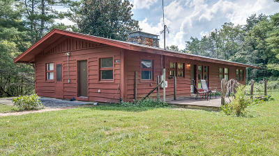 Fincastle Single Family Home For Sale: 807 Camp Fincastle Ln