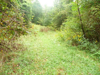 Blue Ridge Residential Lots & Land For Sale: Fields Ave