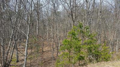 Roanoke City County Residential Lots & Land For Sale: Wellington Dr SE