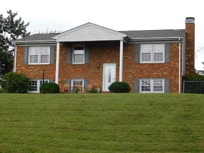 Roanoke VA Single Family Home For Sale: $205,000