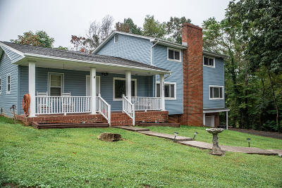 Single Family Home For Sale: 7168 Pine Needle Dr